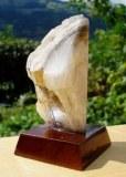 PIERRE DE SAVOIE ( 130 gr/7.3 cm)