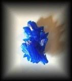 Sulfate de Cuivre (20 gr/ 5 cm)